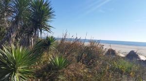Ocean Isle
