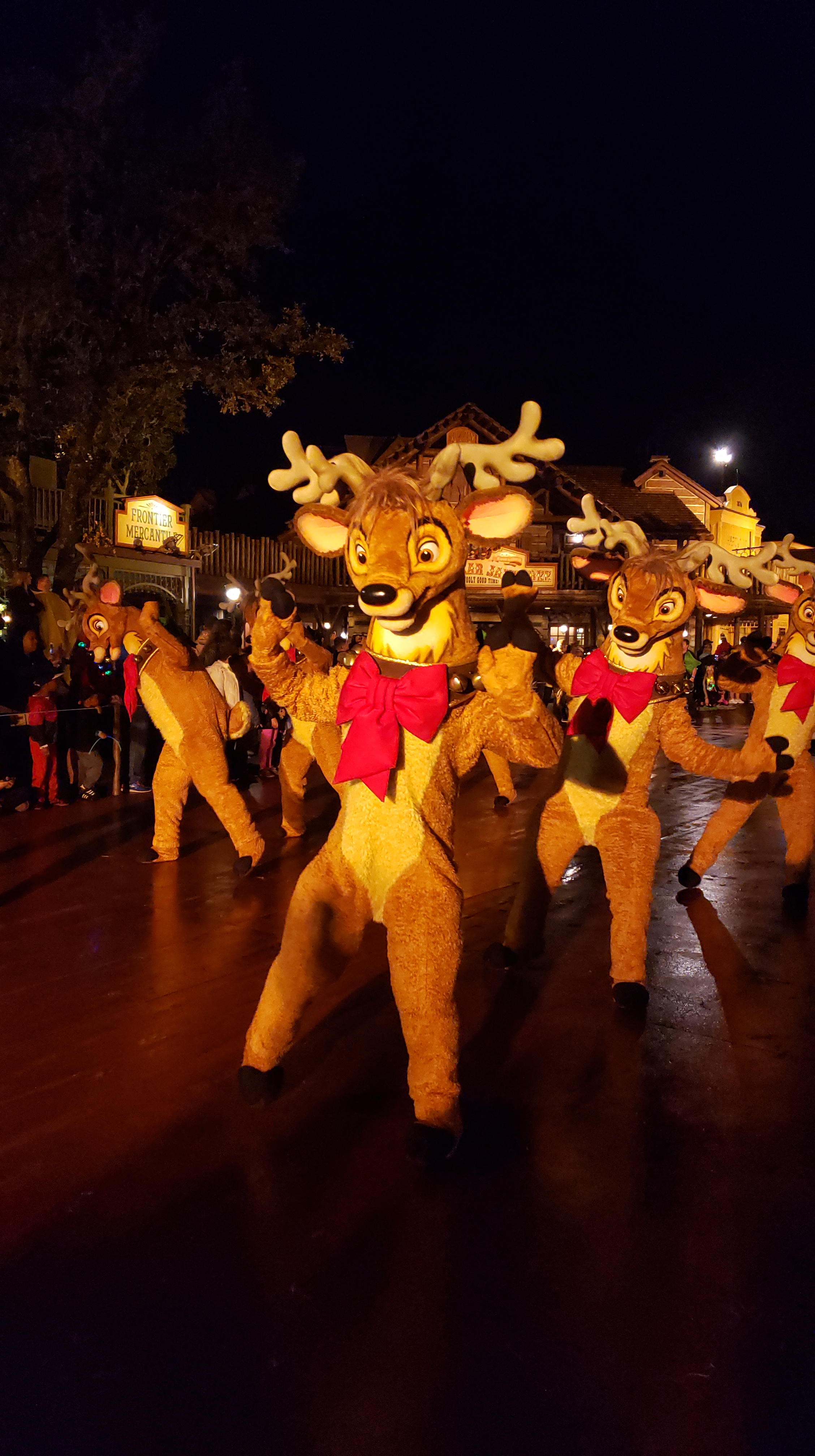 Reindeers in the parade