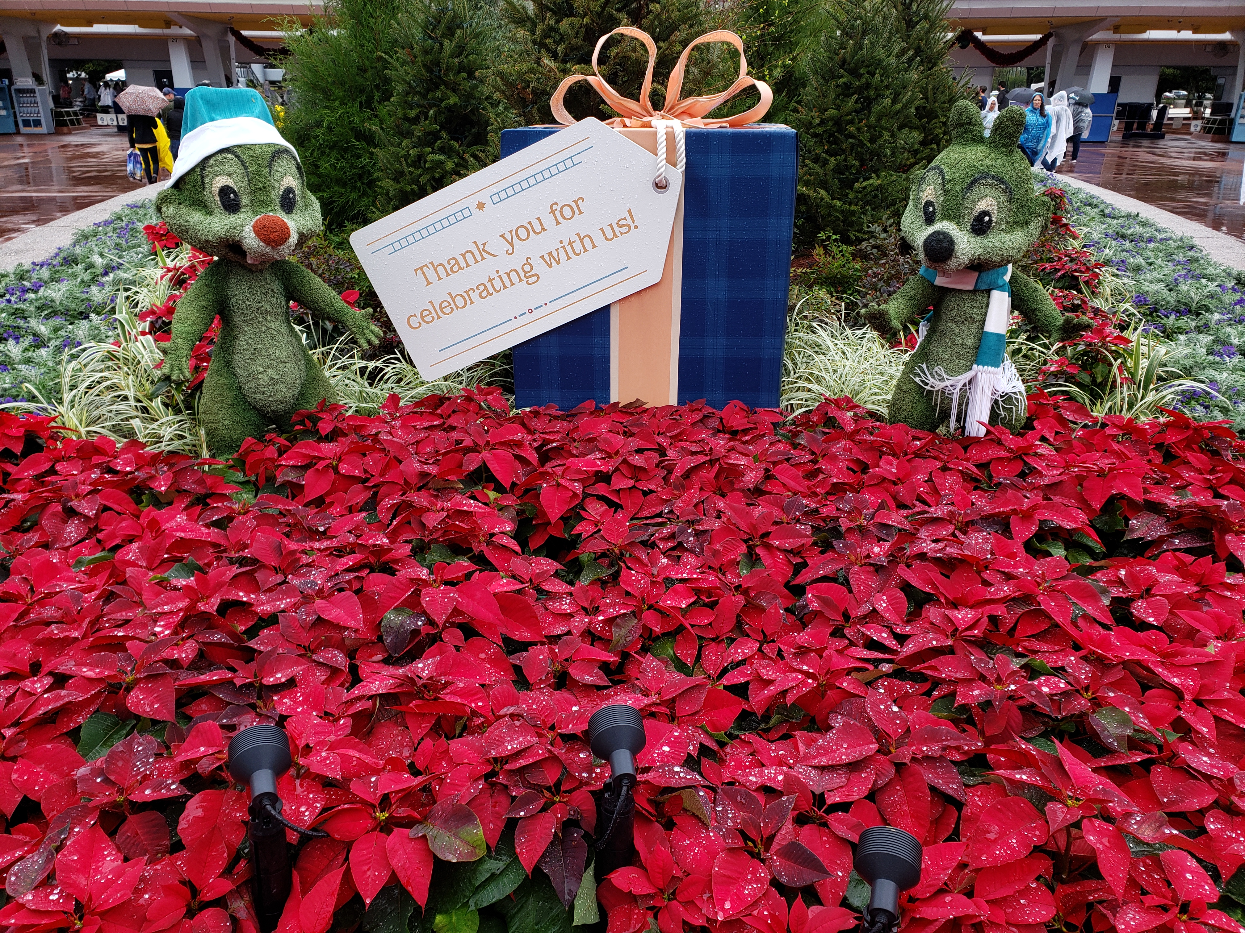 Chip and Dale holiday topiaries