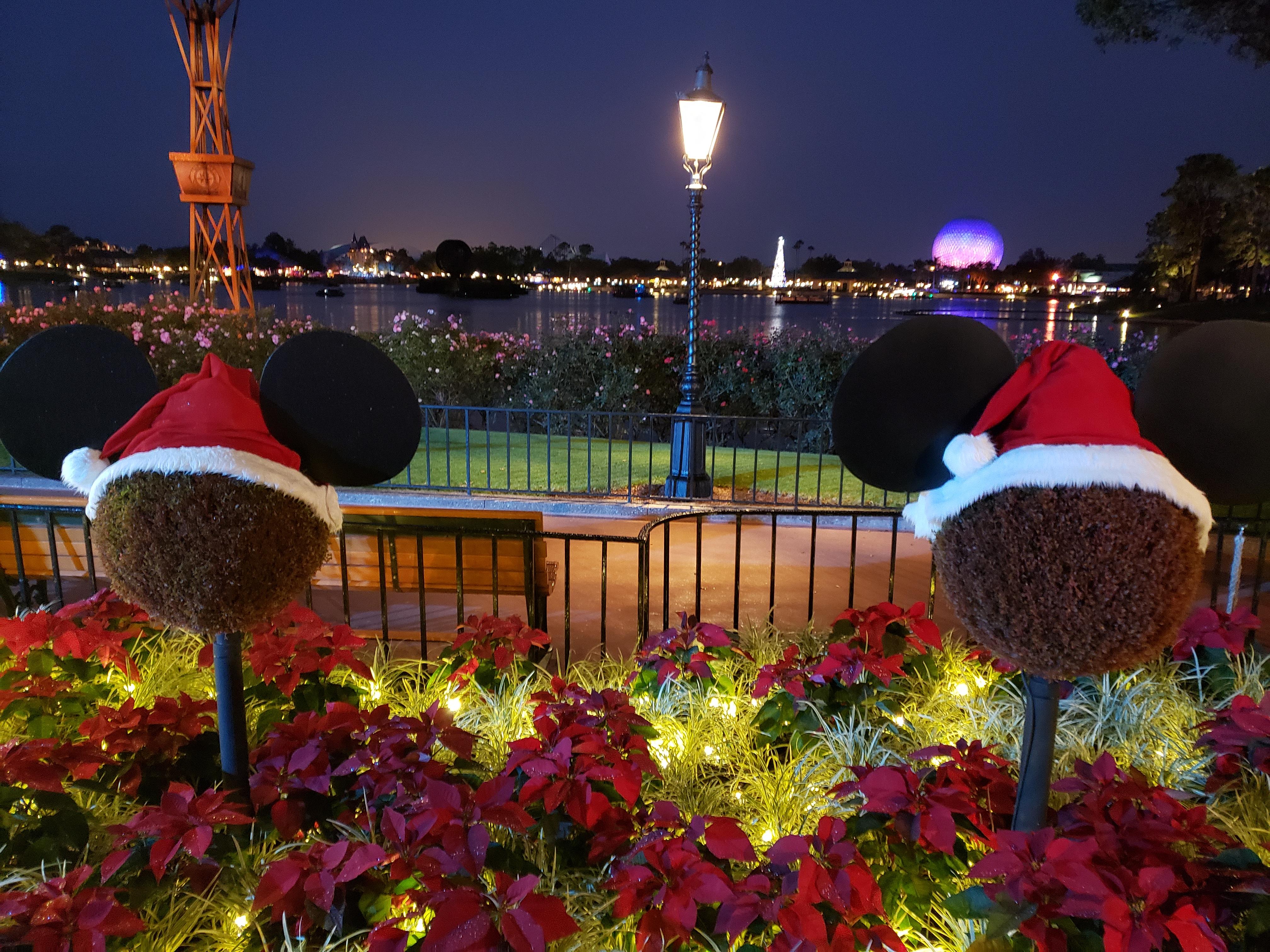 Santa Mickey topiaries